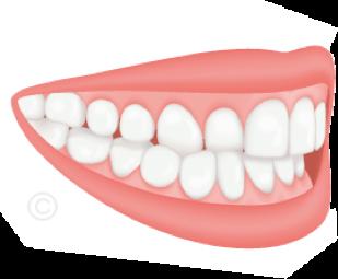 Orthodontiste Rueil-Malmaison - Cabinet 21 Libération